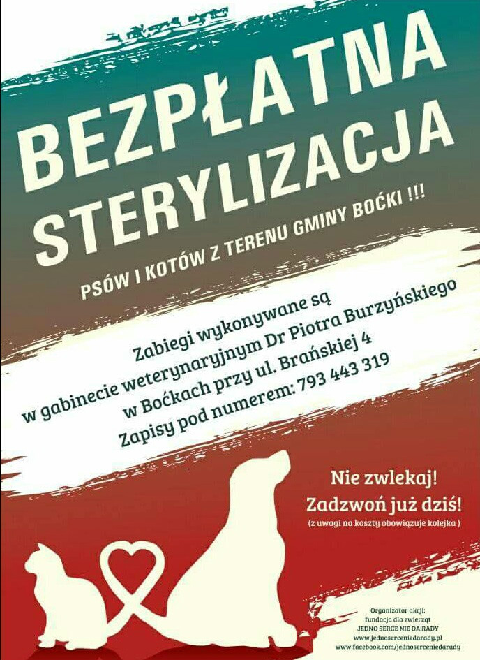 plakat sterylizacja
